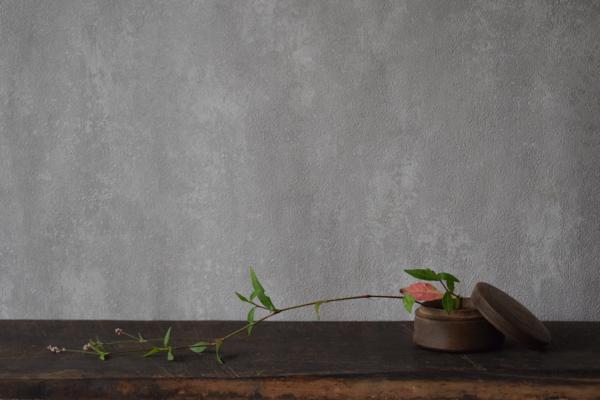 ca-koのウェブサイトです。四季折々の道草。心にとまった身近な草花を、小さな発見を楽しみながら出会った器に合わせています。抛入花の写真です。スウェーデンの小物入れに、犬蓼を入れました。
