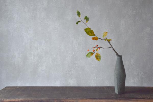 ca-koのウェブサイトです。四季折々の道草。心にとまった身近な草花を、小さな発見を楽しみながら出会った器に合わせています。抛入花の写真です。姫海棠を入れました。