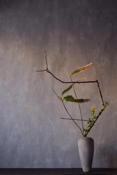ca-koのウェブサイトです。四季折々の道草。心にとまった身近な草花を、小さな発見を楽しみながら出会った器に合わせています。抛入花の写真です。梅の苔木、菜の花、熊笹を入れました。