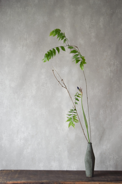 ca-koのウェブサイトです。四季折々の道草。心にとまった身近な草花を、小さな発見を楽しみながら出会った器に合わせています。抛入花の写真です。菖蒲と藤を入れました。