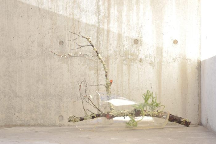 烏山結貴、ca-koのウェブサイトです。四季折々の道草。心にとまった身近な草花を、小さな発見を楽しみながら出会った器に合わせています。抛入花の写真です。白梅、日蔭葛を入れました。