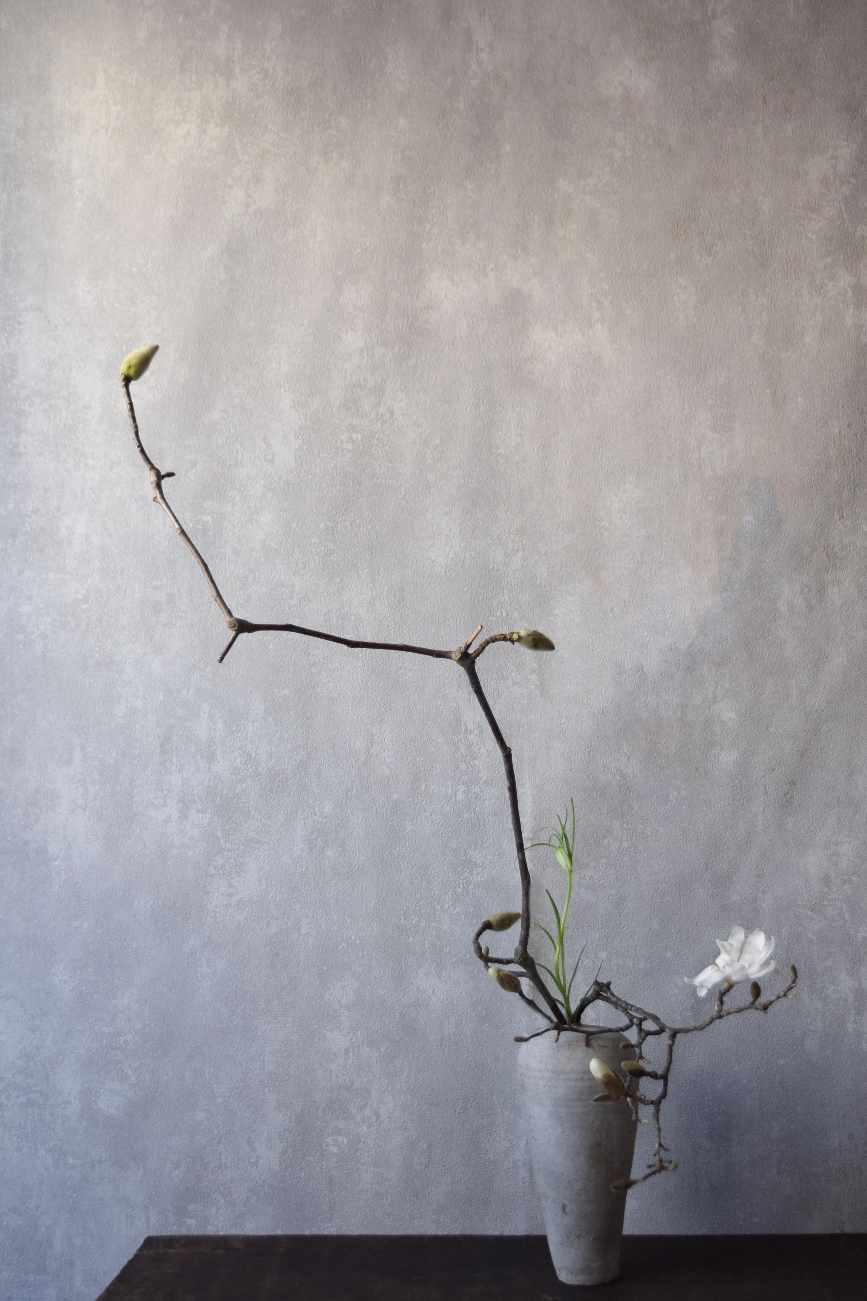 烏山結貴、ca-koのウェブサイトです。四季折々の道草。心にとまった身近な草花を、小さな発見を楽しみながら出会った器に合わせています。抛入花の写真です。辛夷、貝母を入れました。