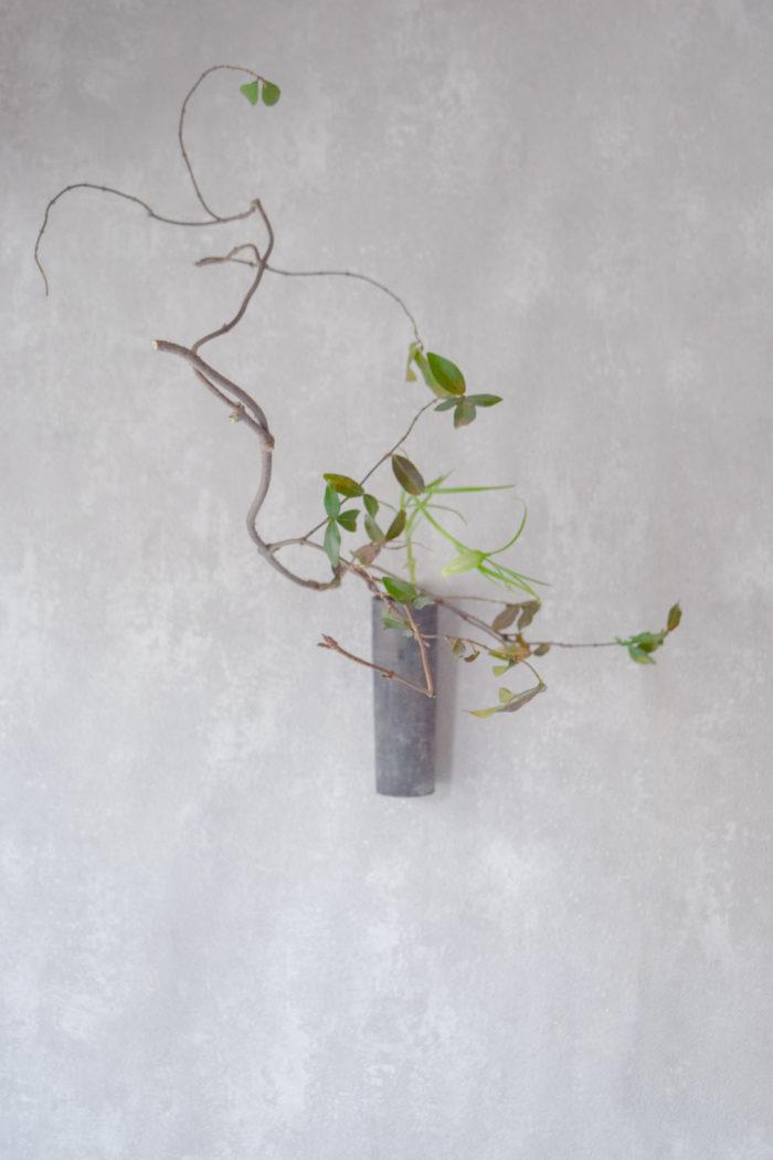 烏山結貴、ca-koのウェブサイトです。四季折々の道草。心にとまった身近な草花を、小さな発見を楽しみながら出会った器に合わせています。抛入花の写真です。貝母、定家蔓を入れました。