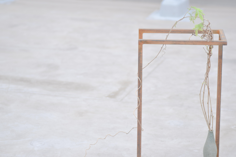 烏山結貴、ca-koのウェブサイトです。四季折々の道草。心にとまった身近な草花を、小さな発見を楽しみながら出会った器に合わせています。抛入花の写真です。藤を入れました。