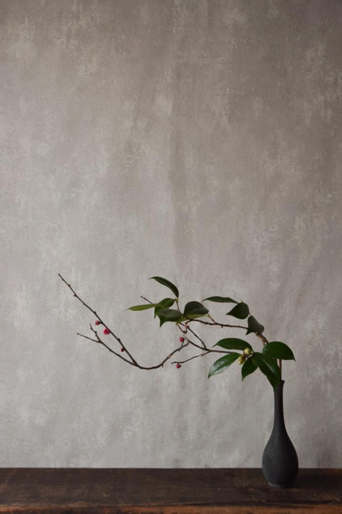 烏山結貴、ca-koのウェブサイトです。四季折々の道草。心にとまった身近な草花を、小さな発見を楽しみながら出会った器に合わせています。抛入花の写真です。紅梅、藪椿を入れました。