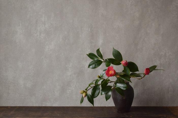 烏山結貴、ca-koのウェブサイトです。四季折々の道草。心にとまった身近な草花を、小さな発見を楽しみながら出会った器に合わせています。抛入花の写真です。藪椿を入れました。