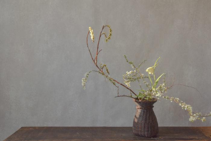 烏山結貴、ca-koのウェブサイトです。四季折々の道草。心にとまった身近な草花を、小さな発見を楽しみながら出会った器に合わせています。抛入花の写真です。雪柳、貝母、木五倍子を入れました。